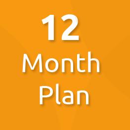 12 month plan