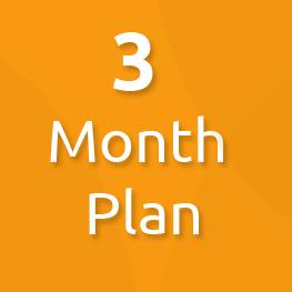 3 month plan