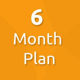 6 month plan
