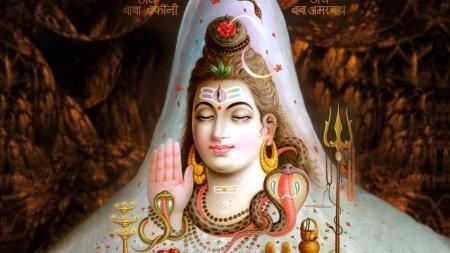 Rudrabhishek Puja on Maha Shivratri