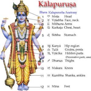 kaalapurusha-anatomy
