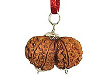 gauri-shankar-rudraksha-pendant